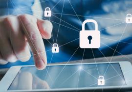 A importância dos seguros de riscos digitais em tempos de LGPD